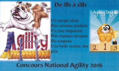 28/08/2016 Concours Canin National Agility  � Saint Michel Chef Chef
